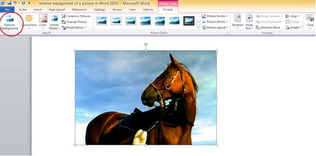 How to Remove Image Background in Word?, The Ultimate Content Marketing